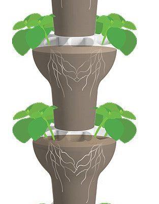 מערכת גידול אנכית מלאה אדמת שתילה ובחלקה התחתון מאגר הידרופוני
