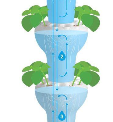 מערכת גידול אנכית בשיטה ההידרופונית הצפה וריקון